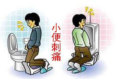 撒尿的时候尿道刺痛  当心疾病来袭
