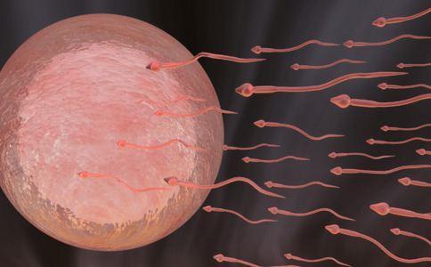 精子有些发红为什么?四方面判断精子是否正常