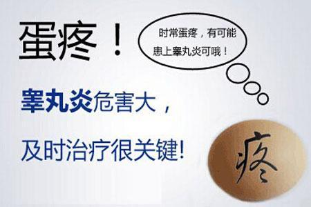男生蛋蛋为什么会疼  警惕睾丸炎来袭