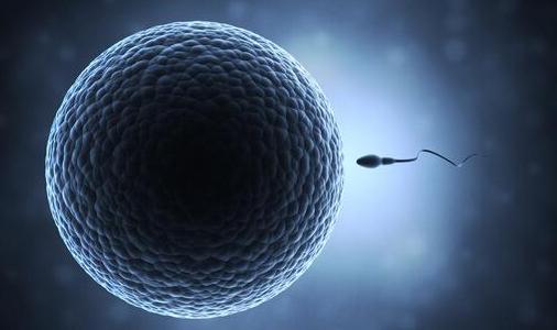 婚后一直没有孩子?淮安这家医院可以查精子活性